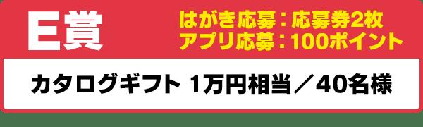E賞 カタログギフト 1万円相当/40名様